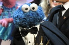 Another 'Call Me Maybe' parody…but this one features the Cookie Monster