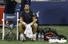 US Open: Ferrer into quarters as rain frustrates Djokovic, Roddick