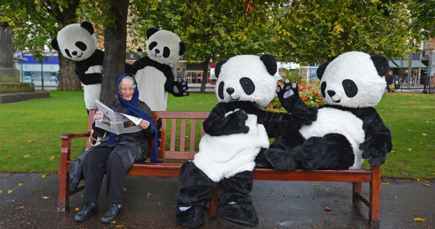 GALLERY: Edinburgh is invaded by giant pandas… kind of