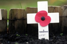 Man arrested for posting photo of burning poppy on Facebook