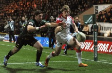 Heineken Cup: Write us off at your peril Foden warns Ulster
