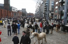 First 'new-look' regulated Smithfield Horse Fair on Sunday