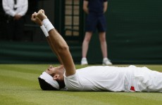 2 of the best Del Potro shots you'll ever see gets him into Wimbledon semis