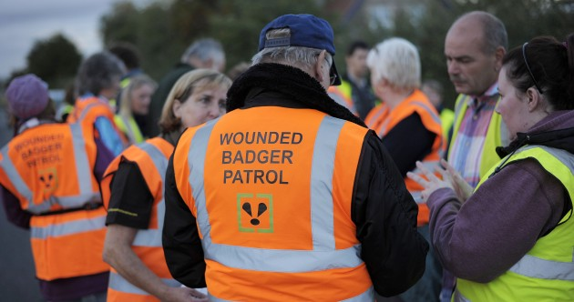 On patrol with Britain's badger cull saboteurs
