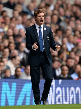 AVB on the touchline at White Hart Lane last weekend.
