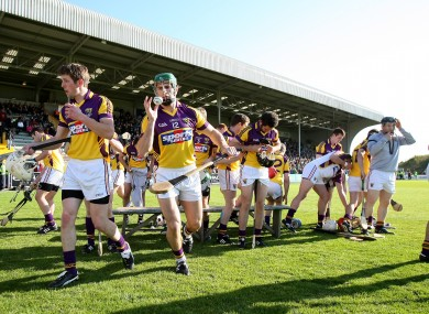 The Wexford hurlers (file photo).