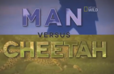 NFL star Devin Hester raced a cheetah… and won